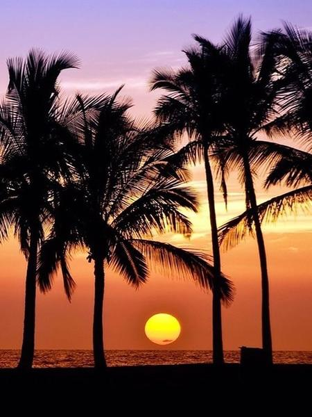 Sunset with Palms 08 Diamond Painting Kit - Diamond Painting Corner