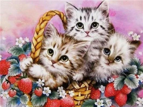 Three Baby Cats in a Basket Diamond Painting Kit - Diamond Painting Corner