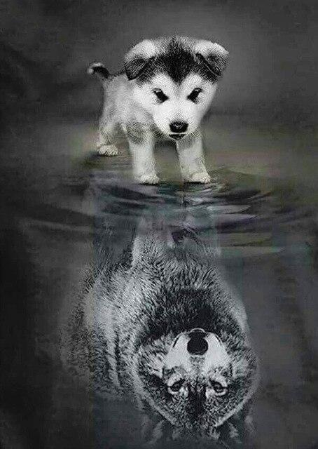 Wolf Puppy & Adult Image Diamond Painting Kit - Diamond Painting Corner