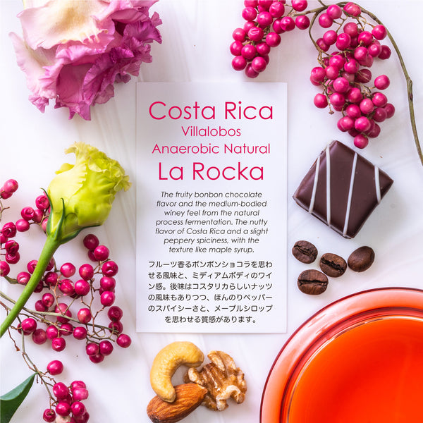 La Rocka Villaalobos Anaerobic Natural [Fruit Chocolat]