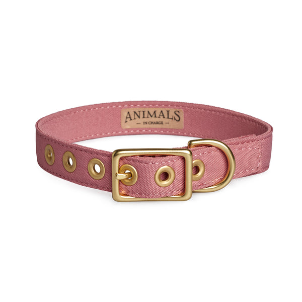 Dusty Pink + Brass All Weather Dog Collar - Sunday Paws