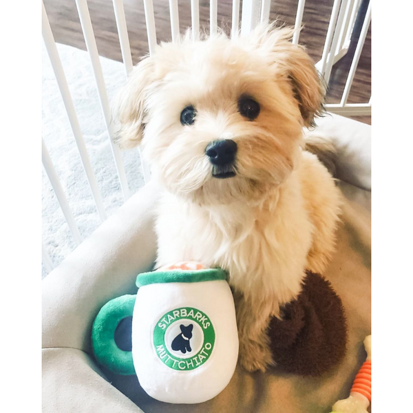 Starbarks Muttchiato Coffee Cup | Plush Toy