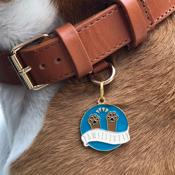 Pawsitivity | Pet Tag