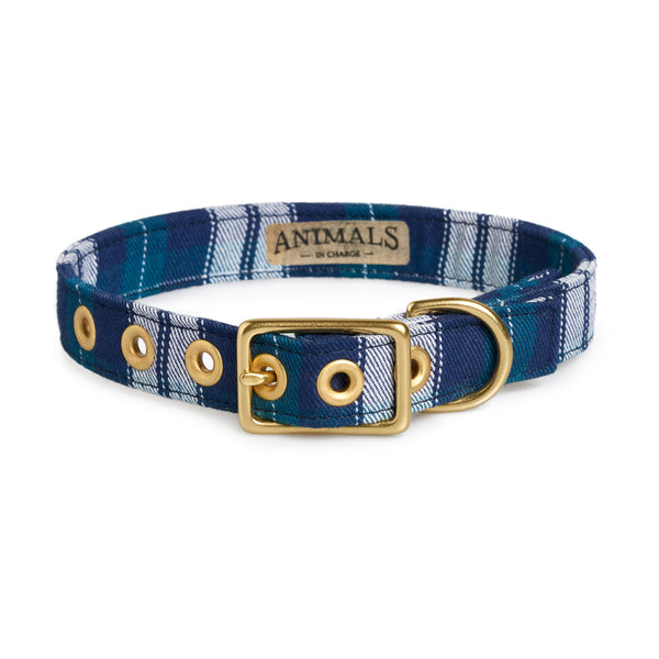 Blue Tartan + Brass Cafe Collar - Sunday Paws