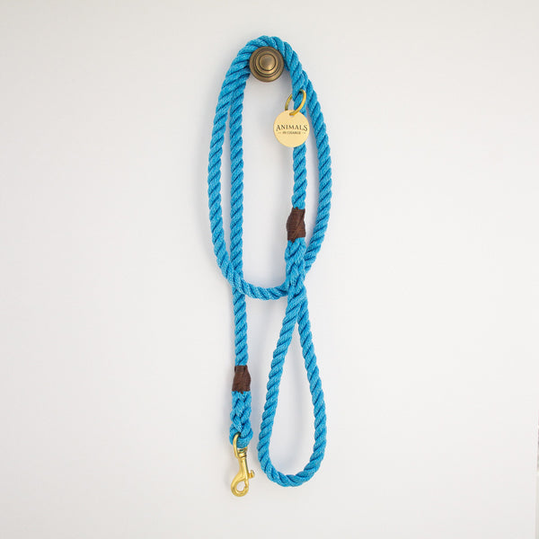 Sky Blue + Brass Rope Dog Leash - Sunday Paws