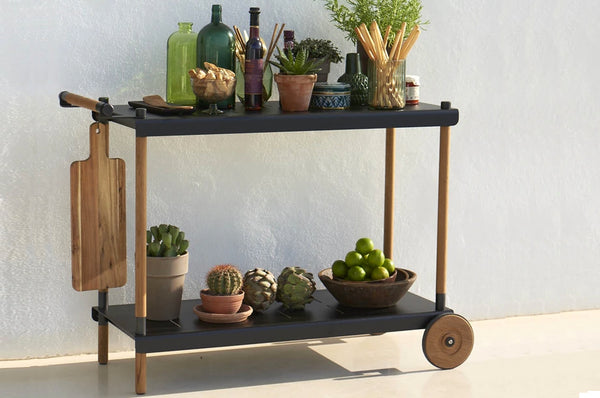 An image of the rustic black and brow Fram Trolly Bar Cart with succulant plants on top from Creative Living's collection of modern patio furniture.