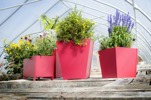 An image of the tapered modern planter from Creative Living.