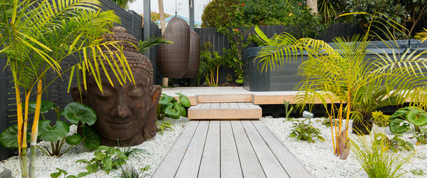 Subtropical garden project in Westmere