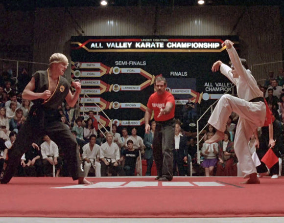 William Zabka / Ralph Macchio Dual Signed Crane Kick 11x14 Photo w/ Cobra Kai / Miyagi-do