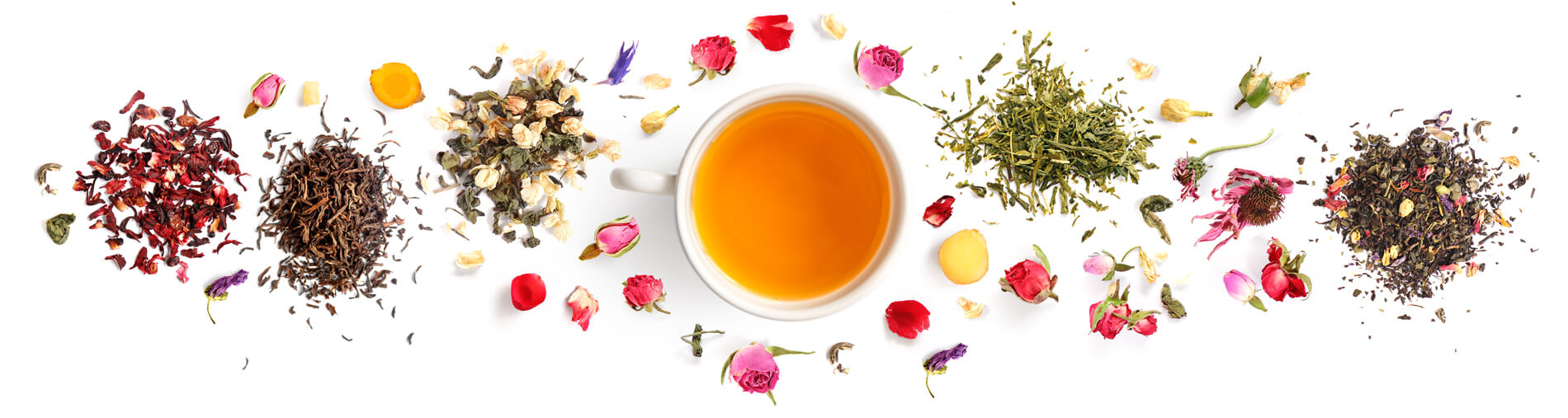 Creative layout made of cup of tea, green tea, black tea, fruit and herbal, tea, turmeric, ginger on white background. Flat lay. Food concept.