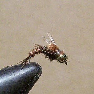 B.H. Pheasant Tail (curved hook)