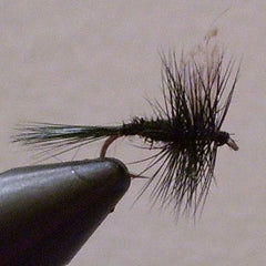 Closeout Flies