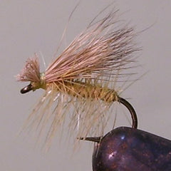 Elk Wing Caddis (yellow)