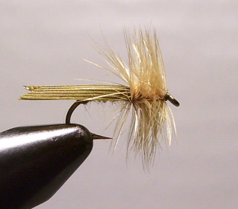 Olive Tent Wing Caddis