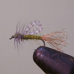 Loop Wing Emerger (BWO)