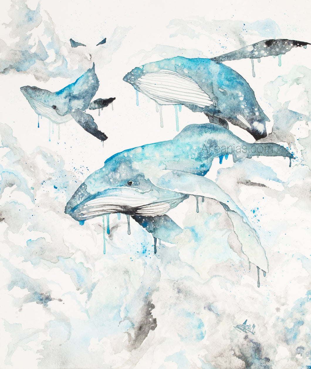 Whales Dream art print