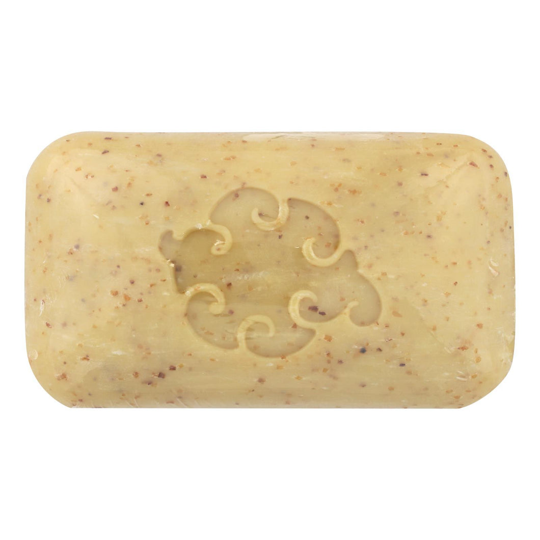 Baudelaire - Hand Soap Sea Loofah - 5 Oz