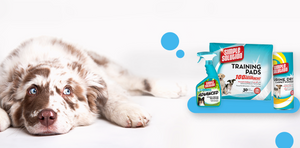 Pet Products South Africa