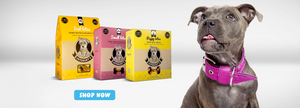 Mr Pet Online Shop | Pet Products