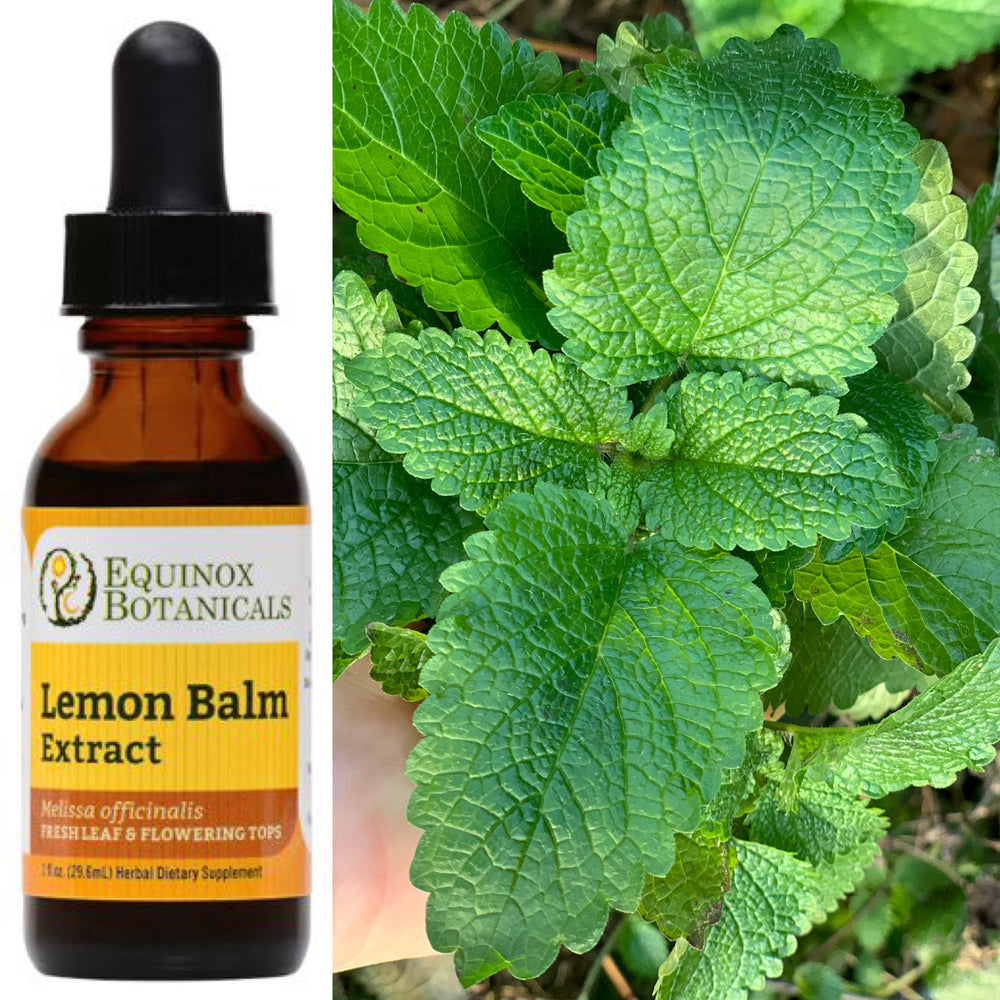 Load image into Gallery viewer, Lemon Balm Extract