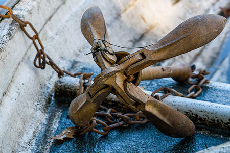 Anchor Chain & Shackles