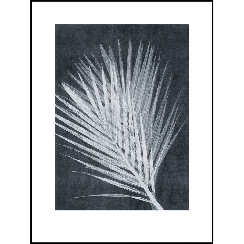 Small Dark Palm - Black Frame