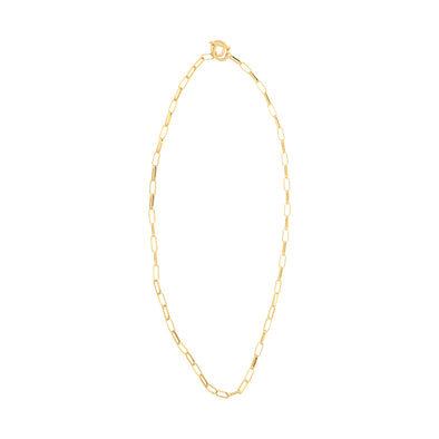 Chain Toggle Lariat Necklace in Gold