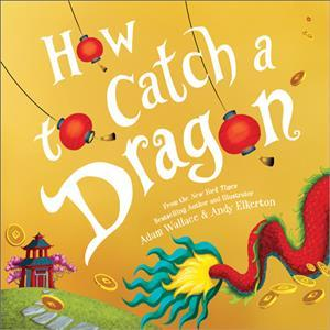 How To Catch A Dragon Hardcover Book