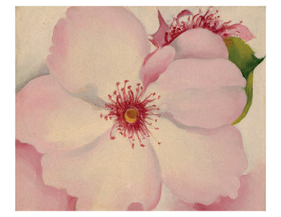 Georgia O'Keeffe Keepsake Boxed Notecards Set of 16