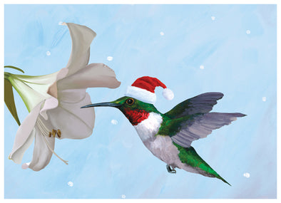 Holiday Hummingbird Box of 15