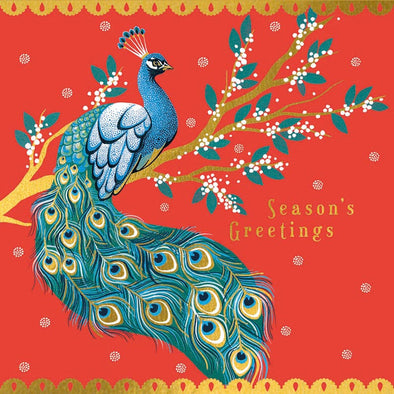 Season's Greetings Peacock - Christmas Luxury Boxed Cards Set of 8