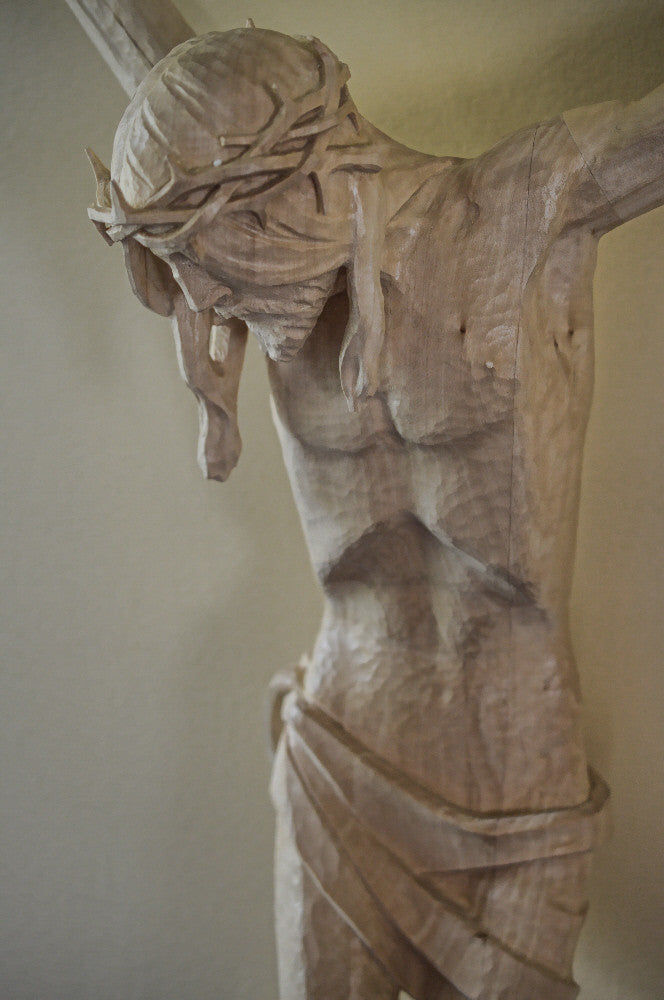 Detail of Corpus Upper Torso