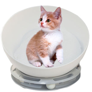 hemispherical orbit cat house