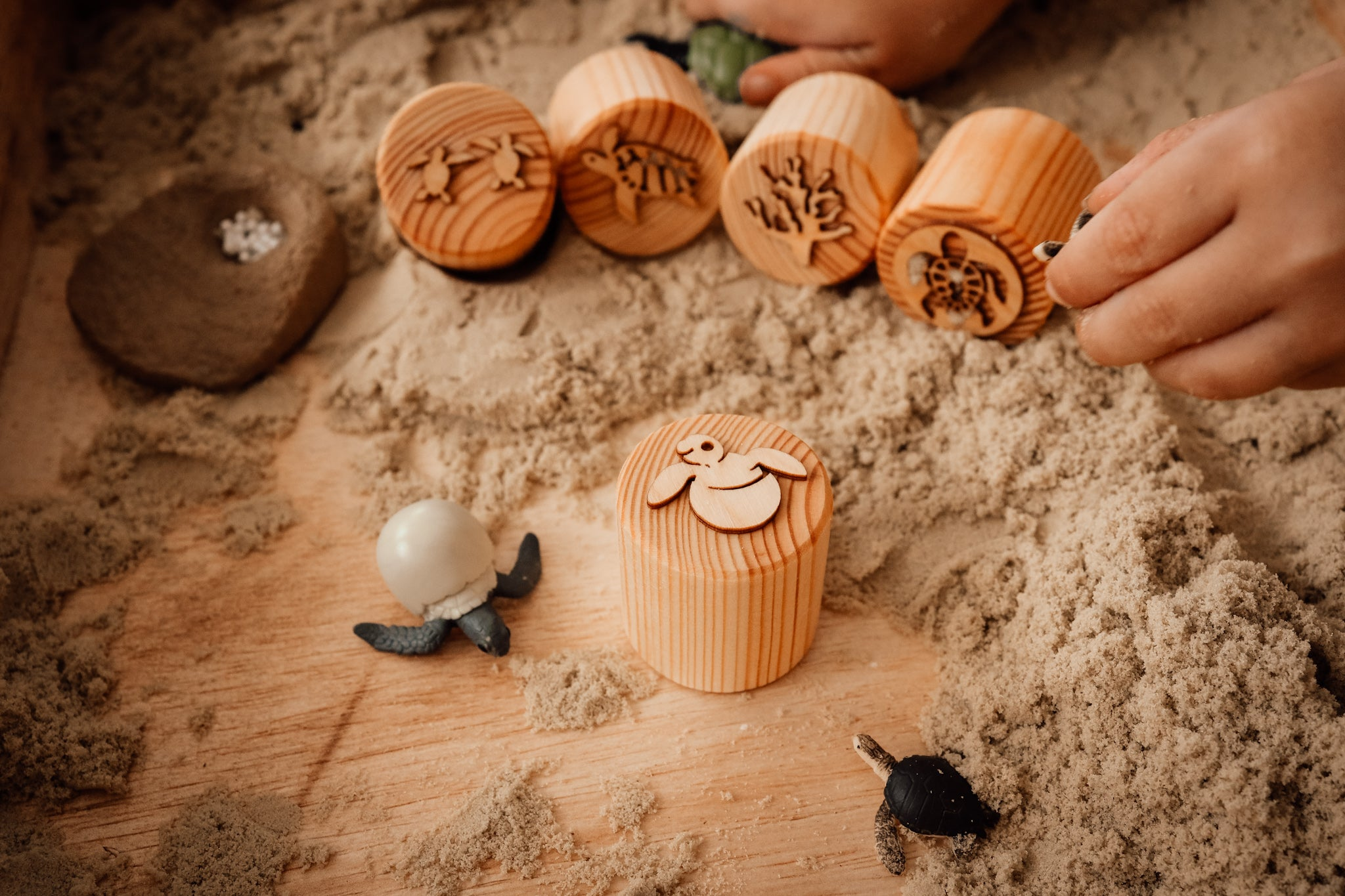 Wooden Turtle Lifecycle Playdough Stamps