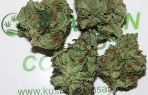 Bruce Banner Hulk strength marijuana flower