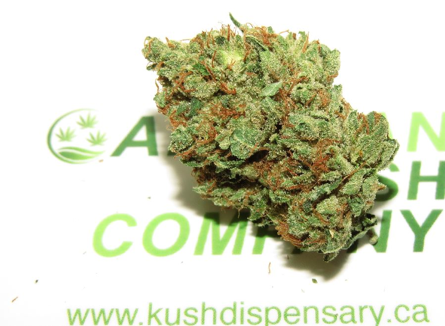 Ultra Connoisseur Mk Kush Marijuana Flower