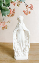 Load image into Gallery viewer, Virgin of Mercy Statue