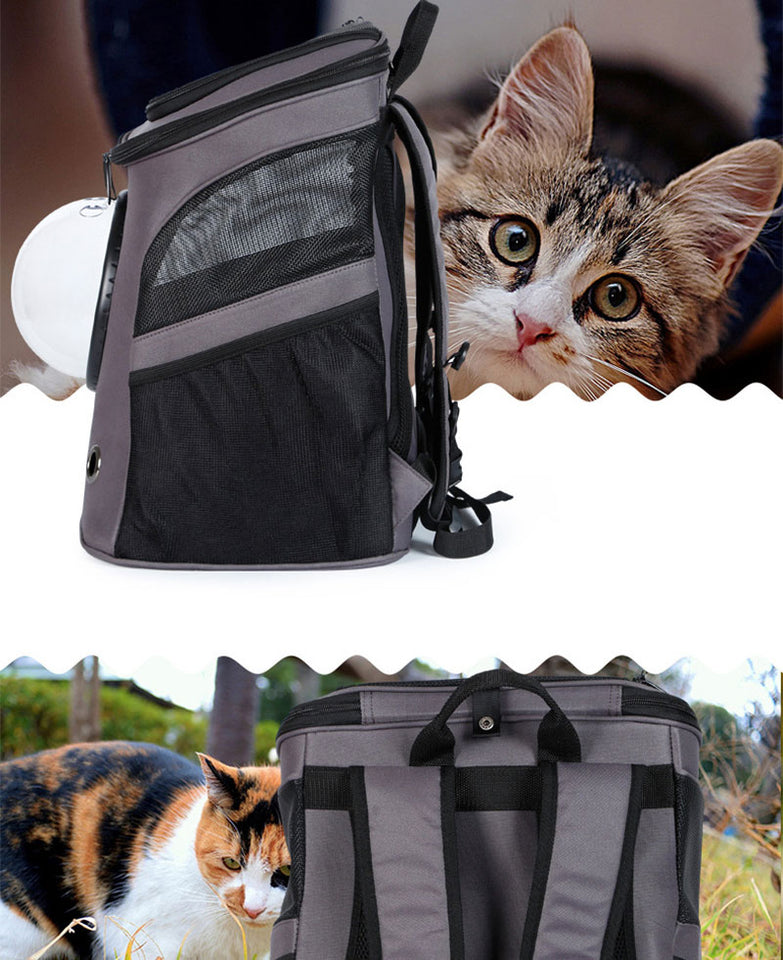 Cat Backpack - For Larger Cats