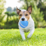 PETOMY Smart Pet Ball-Second improved version