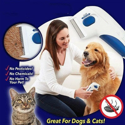 Find, Kill & Remove Pesky Fleas In Minutes