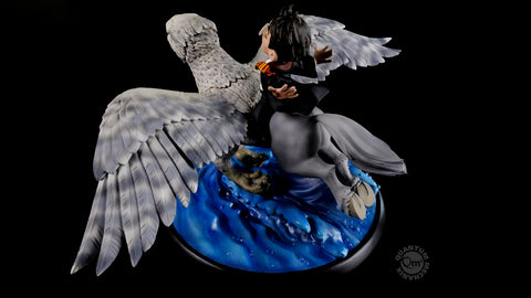 Photo of Harry Potter and Buckbeak Limited Edition Q-Fig Max