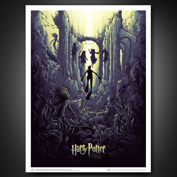 Harry Potter and the Watery Challenge Art Print