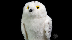 Thumbnail of Hedwig the Snowy Owl 8-inch Plush