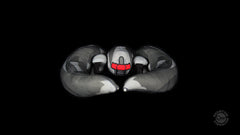Thumbnail of Battlestar Galactica Cylon Raider Plush