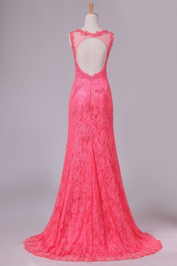Sexy Open Back Scoop Mermaid Lace Prom Dresses PGRYQE4T