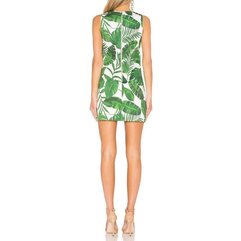 Alice + Olivia Coley Crew Neck Palm Leaf A-Line Dress RRP$285 - Zoom Boutique Store