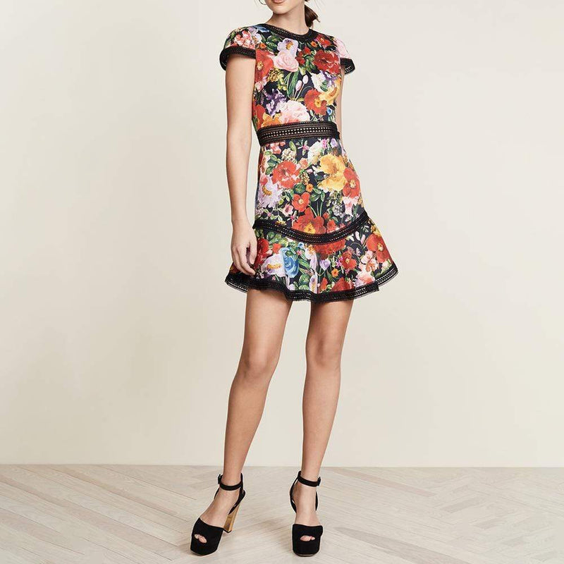 Alice + Olivia Rapunzel Fit & Flare Lace Trim Dress RRP$350 - Zoom Boutique Store