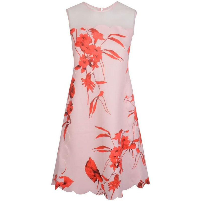 Ted Baker Jaazmin Fantasia Scallop Mini Dress RRP$295 - Zoom Boutique Store