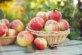 FRESH GALA APPLES 88 Count - Farm To Neighborhoods Produce Boxes