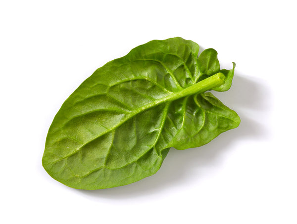 FRESH SPINACH - Farm To Neighborhoods Produce Boxes
